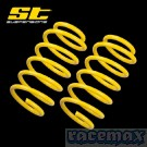 Ford Fiesta MK6 - ST150 - ST Suspensions - ST Tieferlegungsfedern 25 mm - Typ: JH1 / JD3
